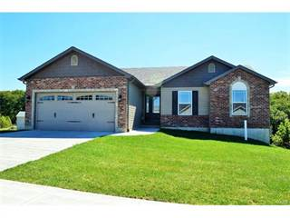 Single Family for sale in 0 Hawks Pointe Walnut II Model, Hillsboro, MO, 63050