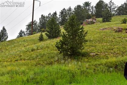 Lots And Land for sale in n/a Lewis Avenue, Victor, CO, 80860