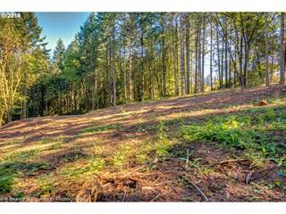 Land for sale in 1512 S KYLE PL, Stafford, OR, 97068