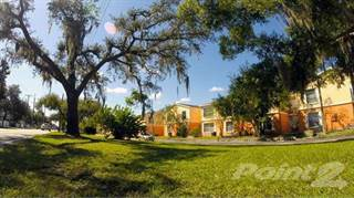 Apartment for rent in Royalty Court Apartments, Egypt Lake-Leto, FL, 33614
