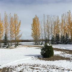 Farm And Agriculture for sale in 78 acres plus two houses near Saskatoon Costco, Saskatoon, Saskatchewan