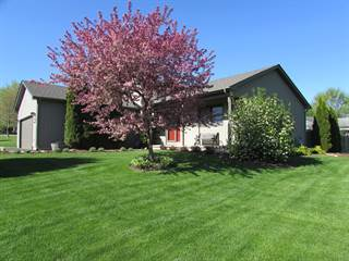 Single Family for sale in 1949 Holiday Drive, Lake Holiday, IL, 60548