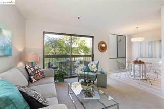 Condo for sale in 771 Kingston Ave 304, Oakland, CA, 94611