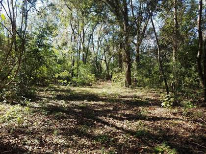 Lots And Land for sale in 1418 Bold Springs Road, Lot 5 & 6, Ochlocknee, GA, 31773