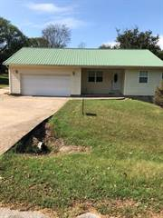 Single Family for sale in 115 N Locust Street, Lead Hill, AR, 72644