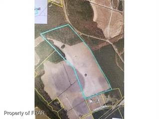 Farm And Agriculture for sale in NORTH OLD WIRE ROAD, Lumber Bridge, NC, 28357