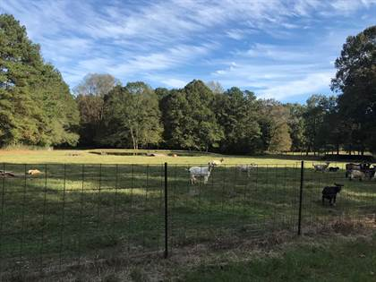 Lots And Land for sale in 304B Smith Ferry Rd., Sontag, MS, 39665