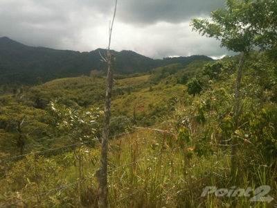 Lots And Land for sale in Bo. Yayales, Adjuntas, Adjuntas, PR, 00601