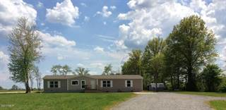 Single Family for sale in 4763 Emmerson City Road, Scheller, IL, 62883