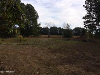 Land for sale in Parc 1 Longest Drive, Otsego, MI, 49078