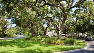 Apartment for rent in Bayside Arbors Apartments - Bristol, Clearwater, FL, 33764
