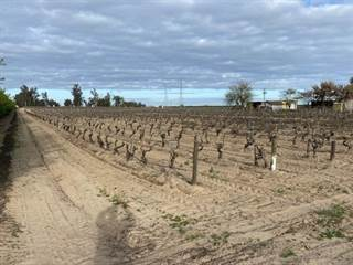Farm And Agriculture for sale in 9787 S CEDAR Avenue, Fresno, CA, 93725