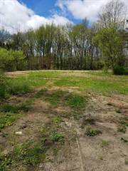 Land for sale in 535 N 4th Street, Greater Westwood, MI, 49009