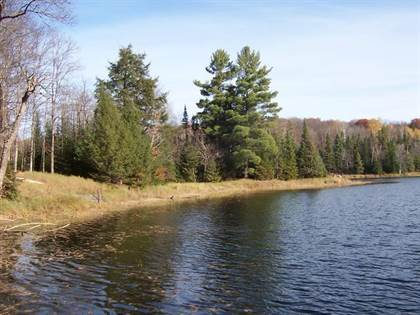 Lots And Land for sale in ON BOAT LANDING RD Lot, Watersmeet, MI, 49969
