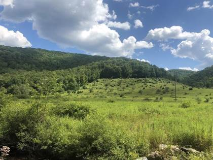 Lots And Land for sale in 2331 Clear Creek Road, Emporium, Greater Emporium, PA, 15834
