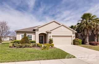 Residential Property for sale in 3199 Zander Drive, Eustis, Fl 32735, Eustis, FL, 32726