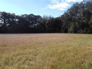 Comm/Ind for sale in XXX US Hwy 129, Bell, FL, 32619