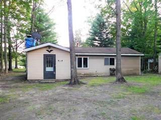 Single Family for sale in 13891 Brethren Heights, Brethren, MI, 49619