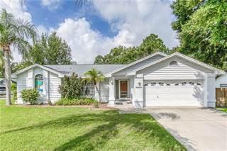 Single Family for sale in 2282 CIMARRON TERRACE, Palm Harbor, FL, 34683