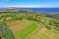 Photo of 4235 N WAIAKALUA ROAD, 96754, Kauai county, HI