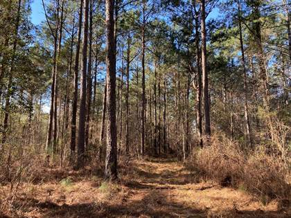Lots And Land for sale in 5561 Hwy 98, Meadville, MS, 39653