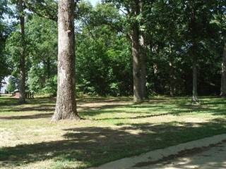 Land for sale in 03 Coventry Lane, Salem, IL, 62881