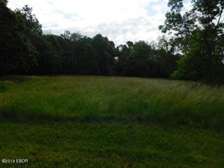 Land for sale in 3500 Block Hotze Road, Salem, IL, 62881