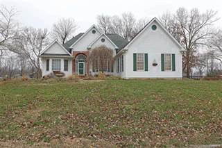 Single Family for sale in 1139 Springbrook Park Drive, Farmington, MO, 63640