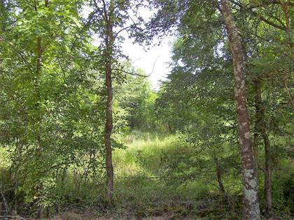 Lots And Land for sale in 280 LR 237, Ogden, AR, 71853