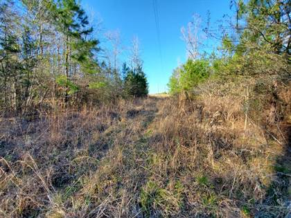Lots And Land for sale in 000 Loarn Morris Freeman Rd., Richton, MS, 39476