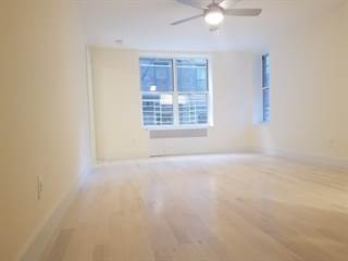 Apartment for rent in 165 E 19th St 18, Brooklyn, NY, 11226