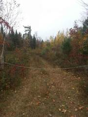 Land for sale in PT 1 PITZNER ROAD, Petawawa, Ontario, K8H6W7