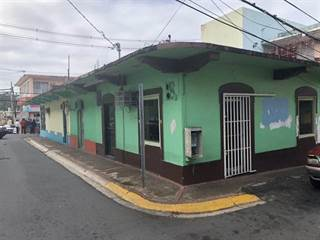 Comm/Ind for sale in 6 6 CALLE PRINCIPAL ESQ. CALLE RUIZ PELVIS, Morovis, PR, 00687