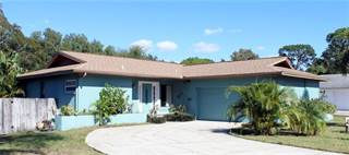 Single Family for sale in 1316 GULFVIEW WOODS LANE, Tarpon Springs, FL, 34689