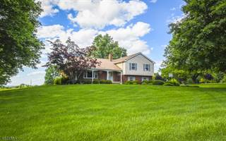 Single Family for sale in 56 SADDLE SHOP RD, Greater Ringoes, NJ, 08551