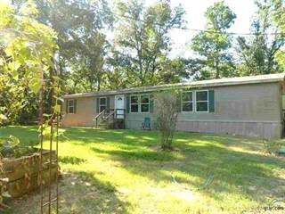 Single Family for sale in 11 Pedernales Court, Mount Vernon, TX, 75457