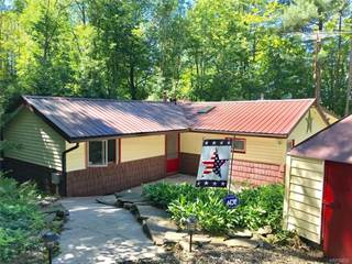 Single Family for sale in 8602 County Road 49, Rushford, NY, 14717