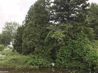 Land for sale in 0 Maloney Street, Oxford, MI, 48371