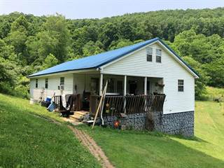 Single Family for sale in 176 Scarberry Hollow, Castlewood, VA, 24224