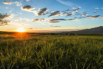 Farm And Agriculture for sale in 1903 Mt. Ellis Lane, Greater Gallatin Gateway, MT, 59715