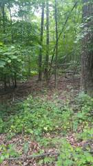 Land for sale in Lot #137 Mattioli Road, Bartonsville, PA, 18321