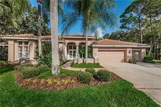 Single Family for sale in 2271 CHRISTY LANE, East Lake, FL, 34677