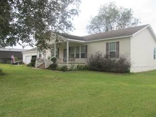Single Family for sale in 688 Hwy 42 W, New Hebron, MS, 39140