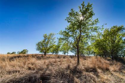 Lots And Land for sale in Lone Tree 240, Turkey, TX, 79261