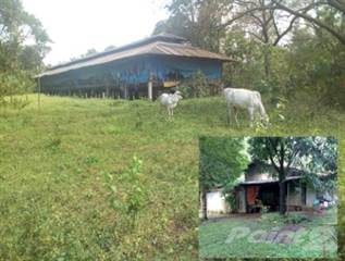 Farm And Agriculture for sale in Sta Maria, Bulacan, Metro Manila
