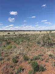 Farm And Agriculture for sale in 192 Westwood Ranches Lot 192, Ash Fork, AZ, 86320