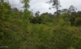 Land for sale in 0000 ADAMS Drive, Alford, FL, 32420
