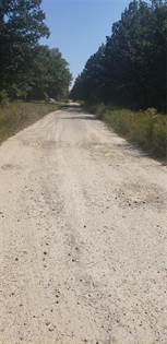 Lots And Land for sale in 9 Lot 9 Joy Lane, Fairdealing, MO, 63939
