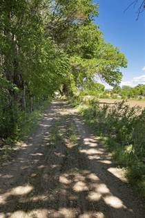 Farm And Agriculture for sale in # Sile Road Farm Land, Pena Blanca, NM, 87041