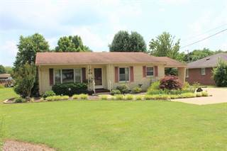 Single Family for sale in 1303 Sycamore Street, Murray, KY, 42071